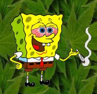 sponge-bob.jpg