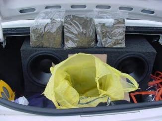 weed-cop-4.jpg