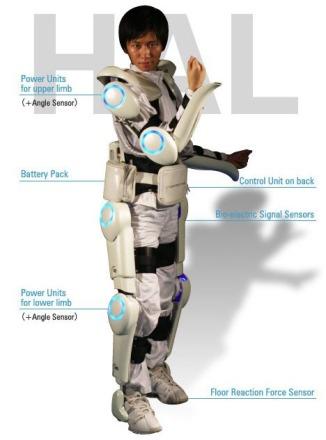 HAl exoskeleton