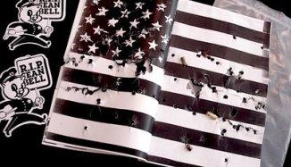 America Drowns in Blood of Sean Bell
