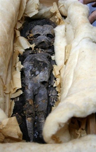 The mummified remains of two foetuses found in the tomb of Tutankhamun