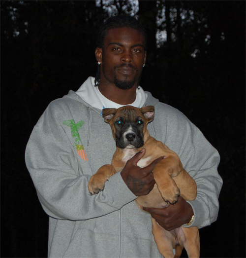 michael vick street knowledge page 4